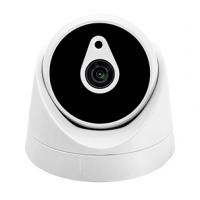Видеокамера VL-i300PFR20