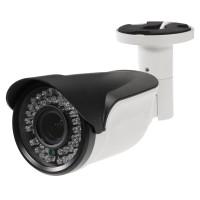 Видеокамера VL-G305MFR25